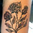 Rosor i gråskala på överarm
